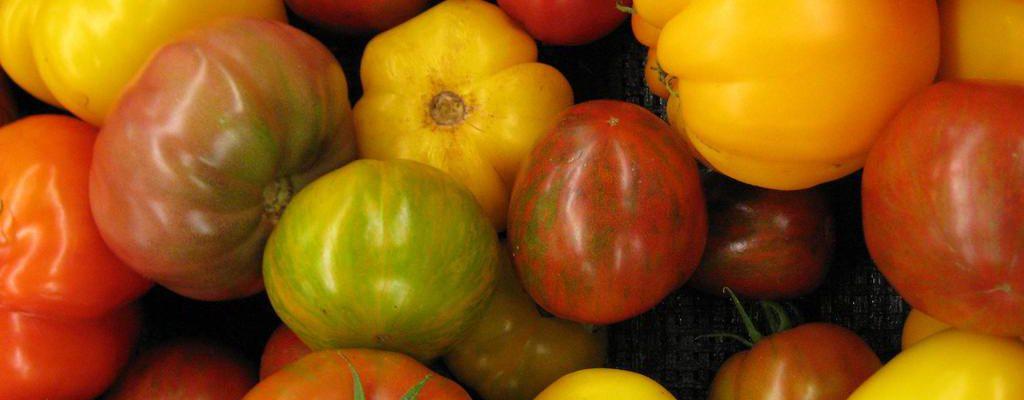 Tomatez reizh